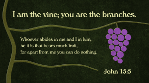 John 155 [widescreen]