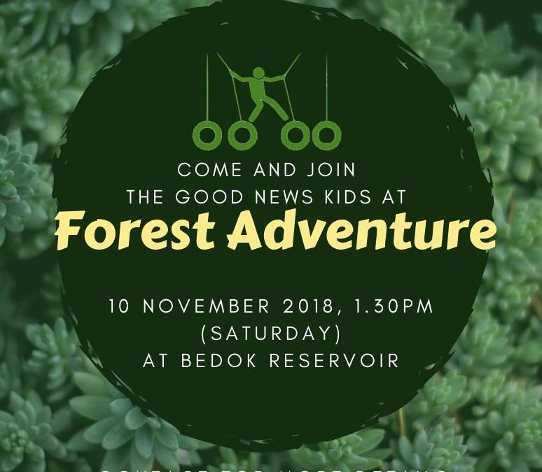 GNK FOREST ADVENTURE