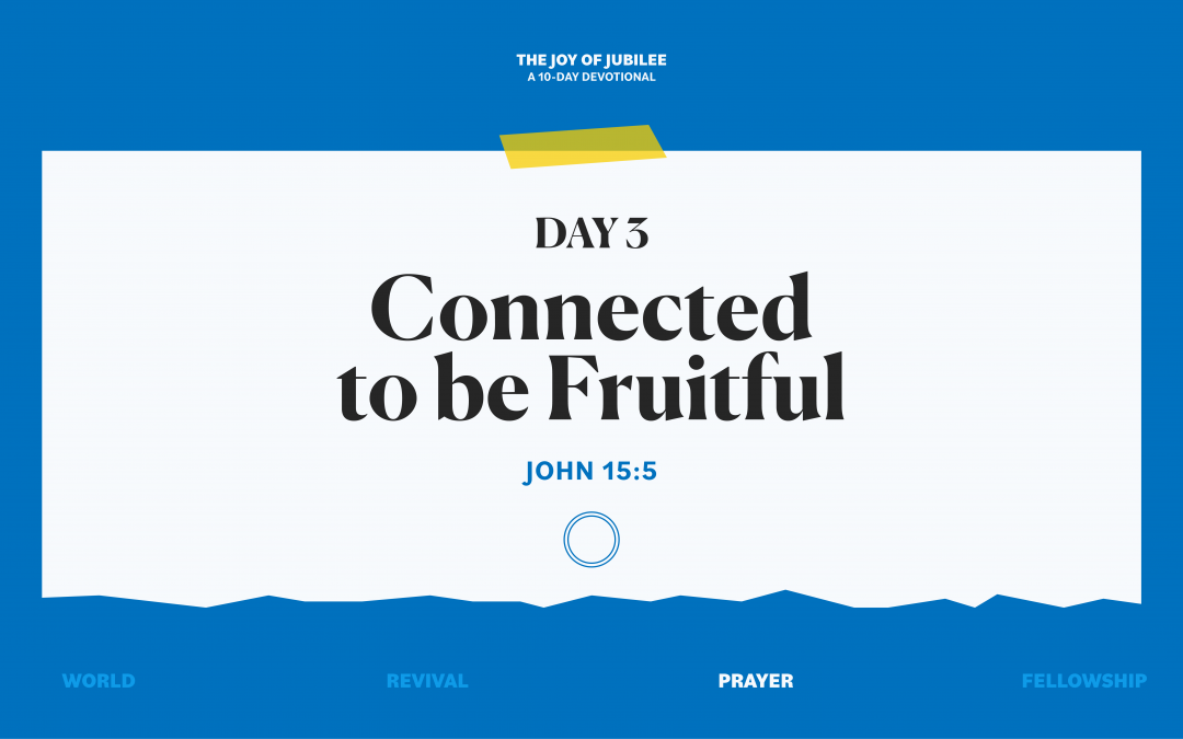 DAY 3 – CONNECTED TO BE FRUITFUL